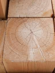 rough douglas fir timber